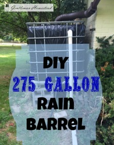 DIY-275-Gallon-Rain-Barrel